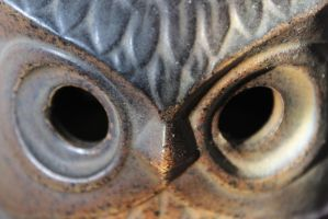 Owl-Candleholder Portrait by Toderico