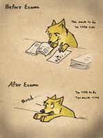 After the exams by LeeyFox