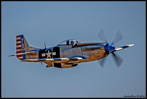 P-51 Mustang 412016 by AirshowDave