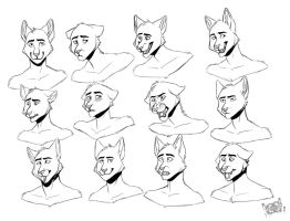 Expression Sheet commission by Inkfang