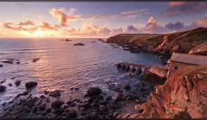 Lizard Point II by geckokid