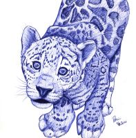 Jaguar sketch by petrunsig