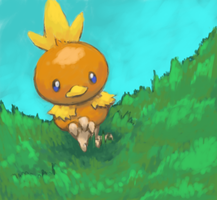 Torchic by Psidra