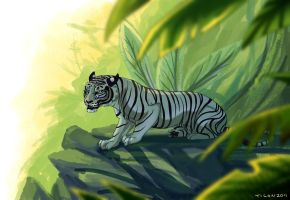 White tiger jungle by tigon