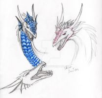 Dragons heads by Shinri-san