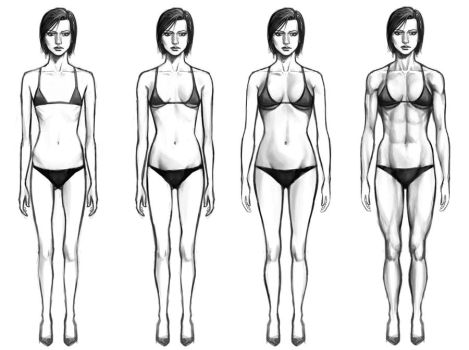 Female Body Types by chaosbringer99