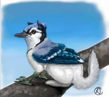 Bluejay Gryphon by Katolin