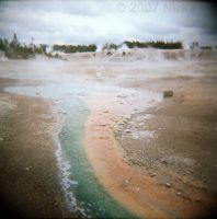 Yellowstone by Holga 4 by Nirka