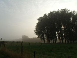 Misty morning 3 by BMFMhero1991