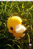 Photo - Just Psyduck in the grass by PurringCakes