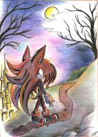 My path to follow. by iheartsonic