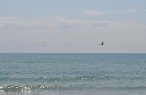 Sky and Sea 7 by thenata