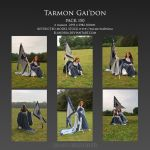 Pack 150 Tarmon Gai'don by Elandria