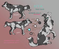 Nya reference by Edenfur