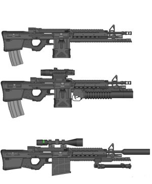 Versions of Hunter rifle