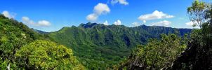 Manoa Valley Morning by joeyartist