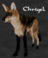 Chrigel the Coyote in Arokai by RouzekiKaosu