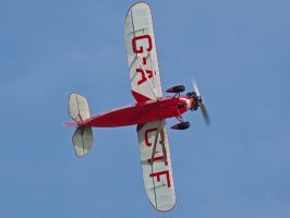 Comper Swift Old Warden by davepphotographer