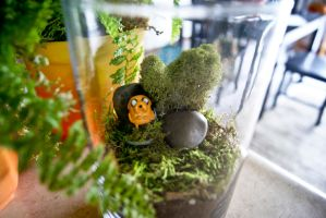 Jake from Adventure Time Terrarium by MaForet