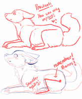 Anatomy tips! (Also a red-line) by SOUDA-SENPAI