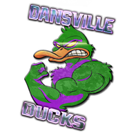 Ducks Logo S6 by Valosion