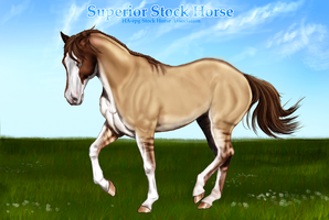 H-S-H-A Superior stock ref by Wild-Rose-Ranch