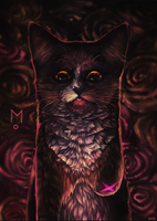 Mo by 6VCR