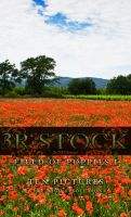 3R Stock - Poppy Field I by NEOkeitaro