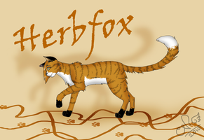 For Herbfox by Moonflight-RiverClan