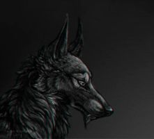 dog facing right by Canis-Infernalis