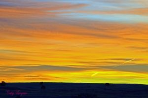 Sky Of Colors II by ChickensAndDucks