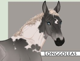 Longgoleas foal by BRls-love-is-MY-Live