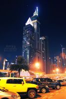 Sheikh Zayed road at night  dec 2010 new edition by amirajuli