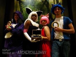 Sonic Group 2 by Archercalloway