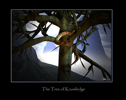 The Tree of Knowledge by spamboy