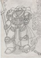 10-Warhammer 40k Grey Knight by ChaosMarine562
