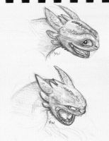 Toothless Sketches by wrobles4