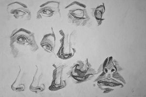 Sketchs Eyes Nose and Mouth by PuriCatacroker