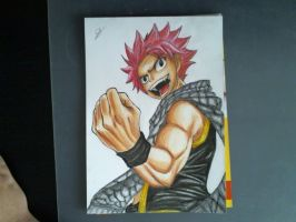 Natsu Dragneel (Fairy Tail) by SeCoDraw