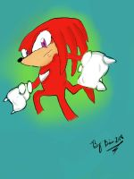 Knuckles by Bria248