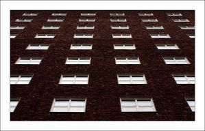 Windows by dimitarmisev