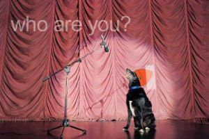 who are you? - Parappa by MaddKaze