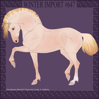 Winter Import #647 by DovieCaba