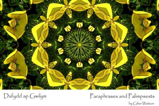 Dafydd ap Gwilym: Paraphrases and Palimpsests by GilesWatson