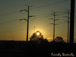 Power Lines by FriendlyButterfly