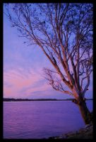 Hastings River sunset 5 by wildplaces