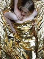 A touch of Gold by L-art-en-rose