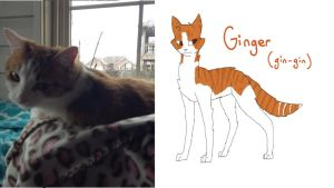 My Cat As A Drawing: Ginger (Gin-Gin) by PainterRaven