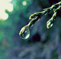 Droplet by JuliaMurphy