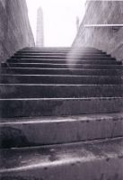cemetary steps by tunny